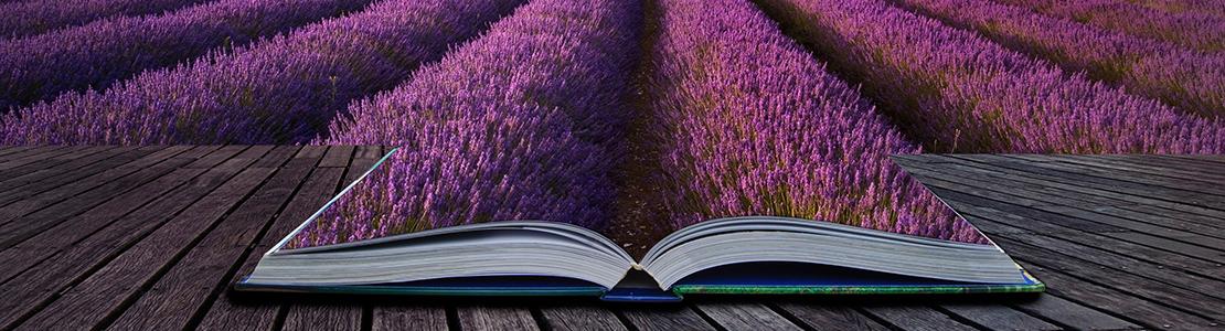 Slide-3-lavender-book